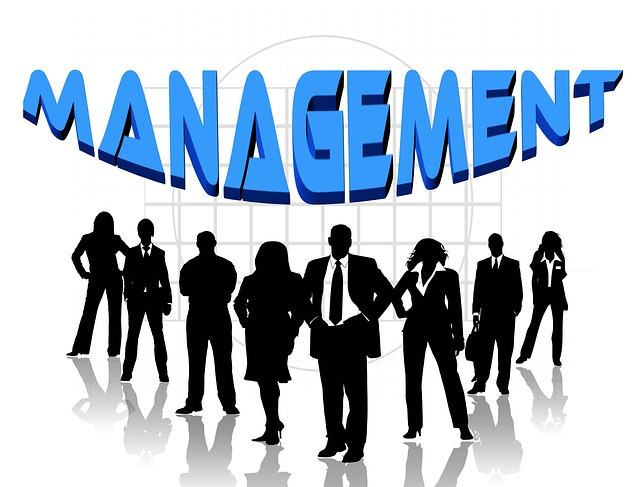 Talent Management Strategies